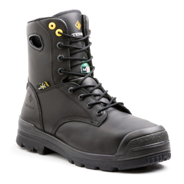 Picture of Terra Paladin Men's Boot